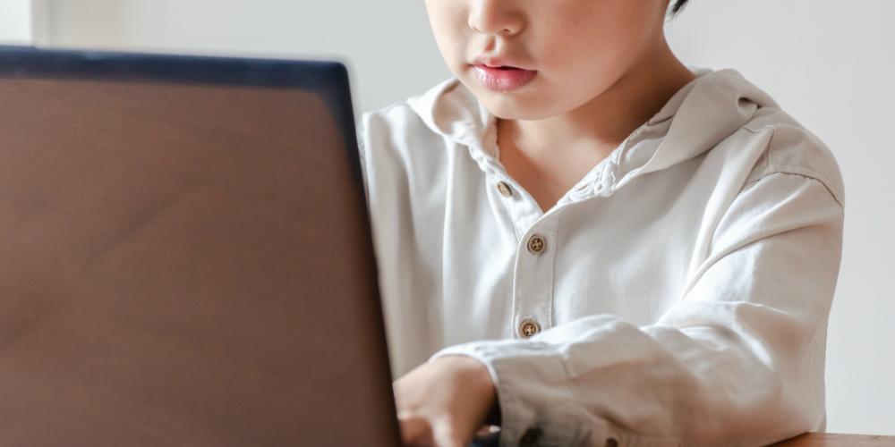 オンライン家庭教師を利用するなら今が狙い目